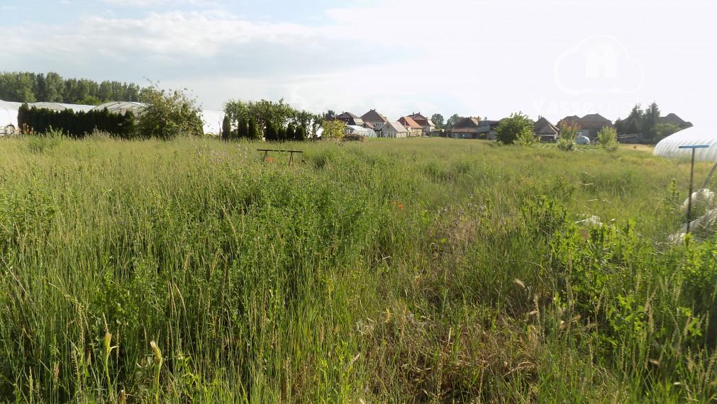 Na predaj pozemok na stavbu domu v obci Imeľ 2km od mesta Nesvady.